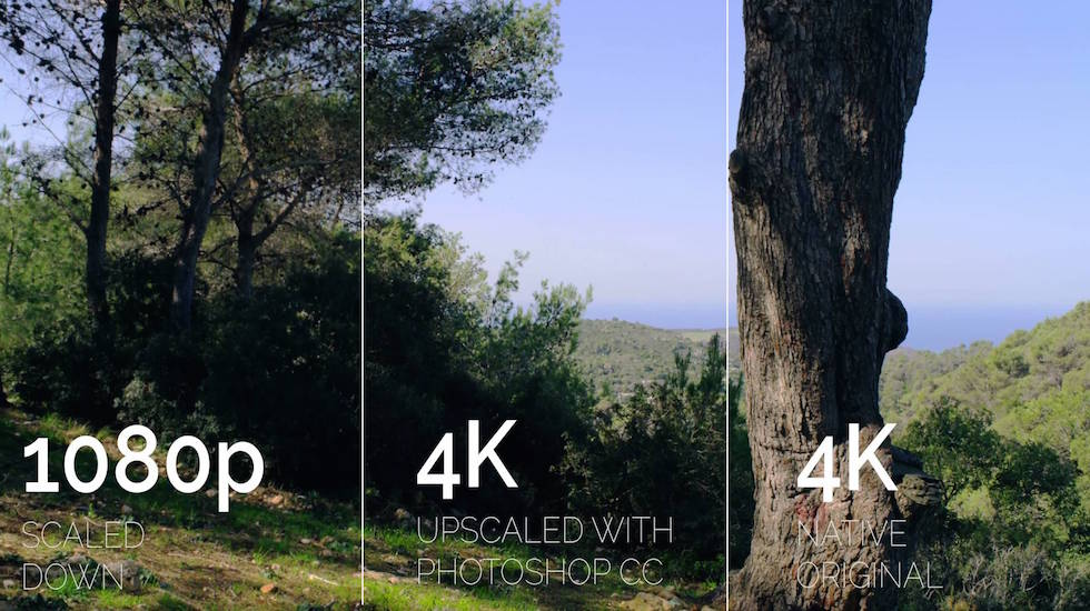 4K vs. 1080p: Which Do You Need?